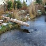 Holzrinne aus alten Brettern ersetzt im Winter den Bachlauf des Schwimm,- und Badeteichs