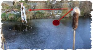 So bekommt das Wasser für den selbst gebauten Schwimmteich auch im Winter immer wieder Sauerstoff, so das die Fische nicht an Faulgasen ersticken.
