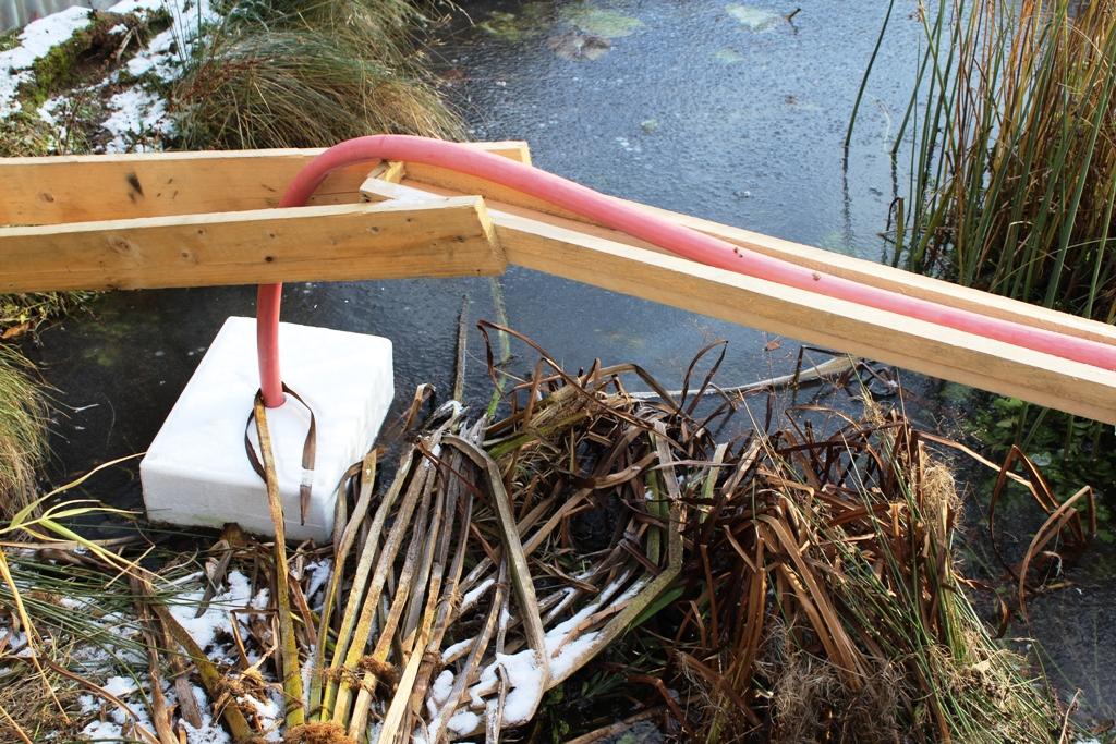 Winterkollektion 01 Mit Blick Auf Den Filtergraben Eines Naturteichs