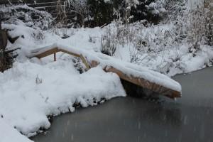 Winterimpressionen am selbst gebauten Naturteich
