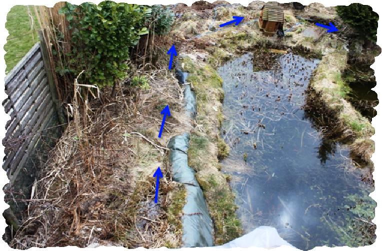 Hier sieht man den alten Bachlauf, oder das was noch davon zu sehen ist. Die Pfeile zeigen den Verlauf an.